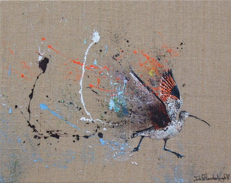 """JACK FETHERSTONHAUGH   STUDY OF A CURLEW   ACRYLIC ON HESSIAN   40 x 50cm   £1,050<br /><a class=""""buy-button"""" href=""""mailto:info@dacre-art.com?subject=Website%20Enquiry"""">Enquire</a>"""