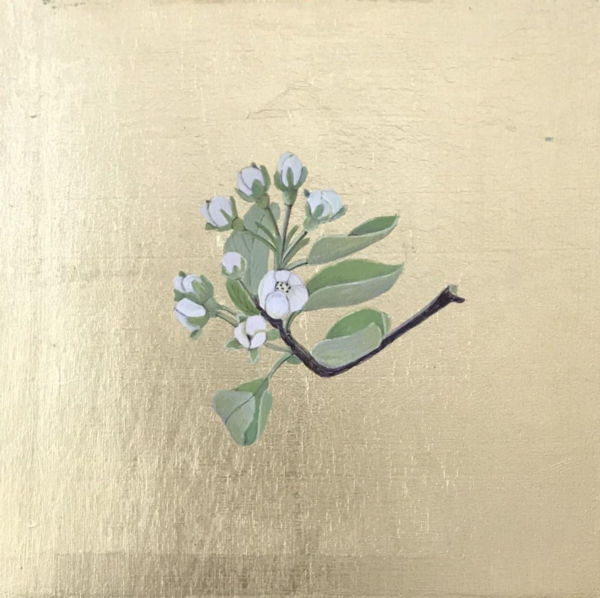 1_pear-blossom-I